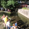 5th Annual Duck Race Held to Benefit Farmers Market